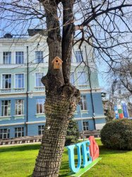 Къщички за птици в двора на ИУ – Варна, декември 2020 г.